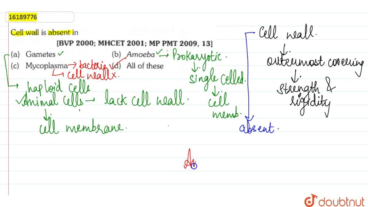 Solution for Cell wall is absent in