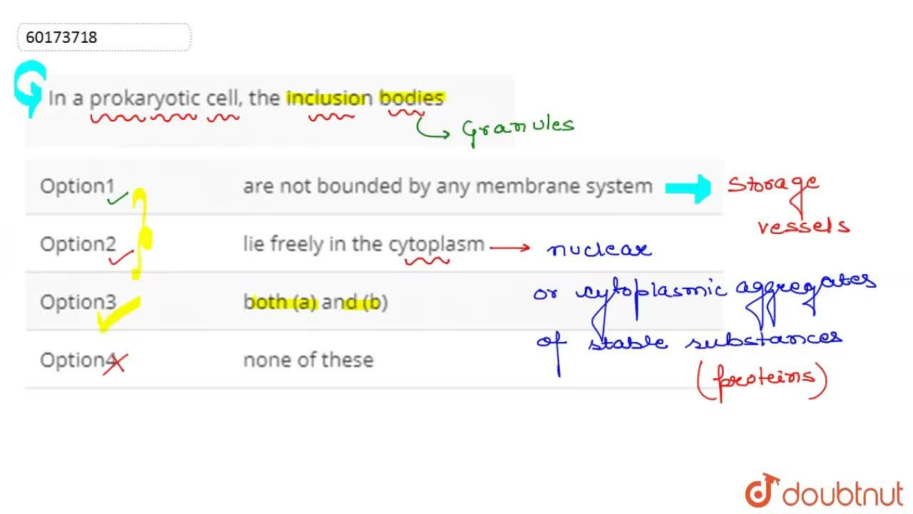 Solution for In a prokaryotic cell, the inclusion bodies