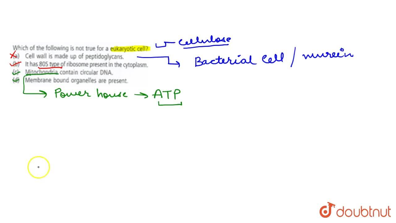 Which of the following is not true for a eukaryotic cell ?