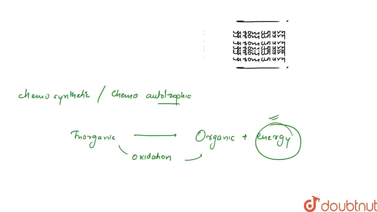 Solution for The main difference between photosynthetic and che