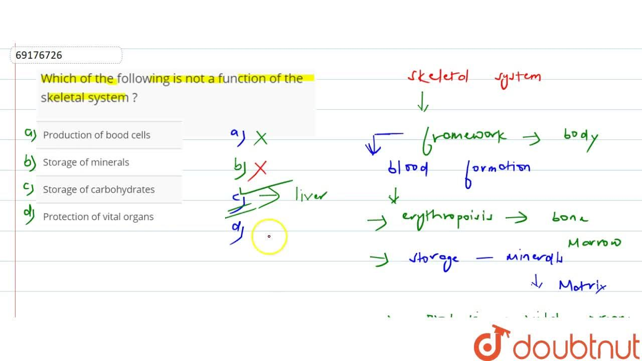 Solution for Which of the following is not a function of the sk