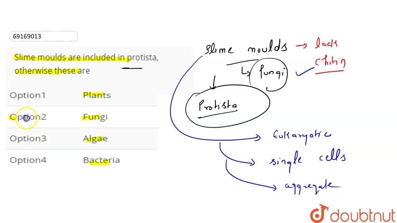 Solution for Slime moulds are included in protista, otherwise t