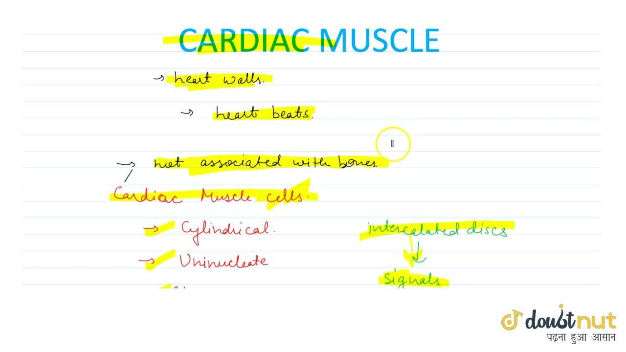 Solution for Cardiac Muscles