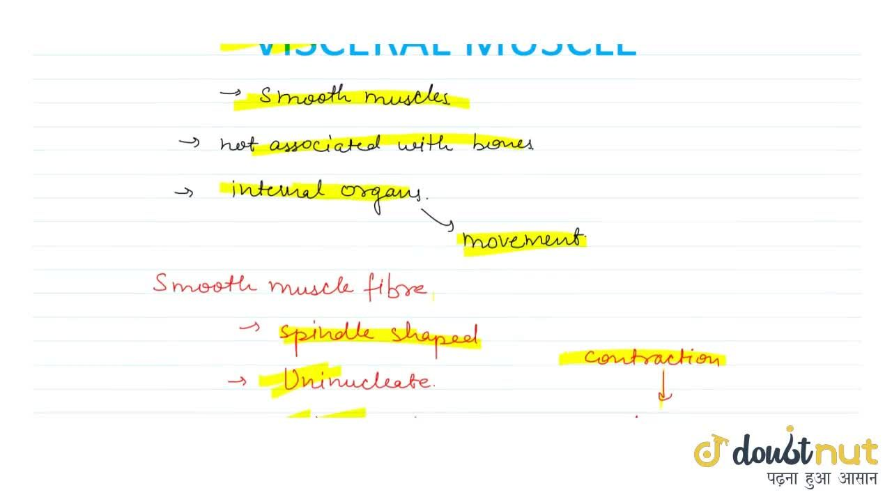 Solution for Visceral Muscles