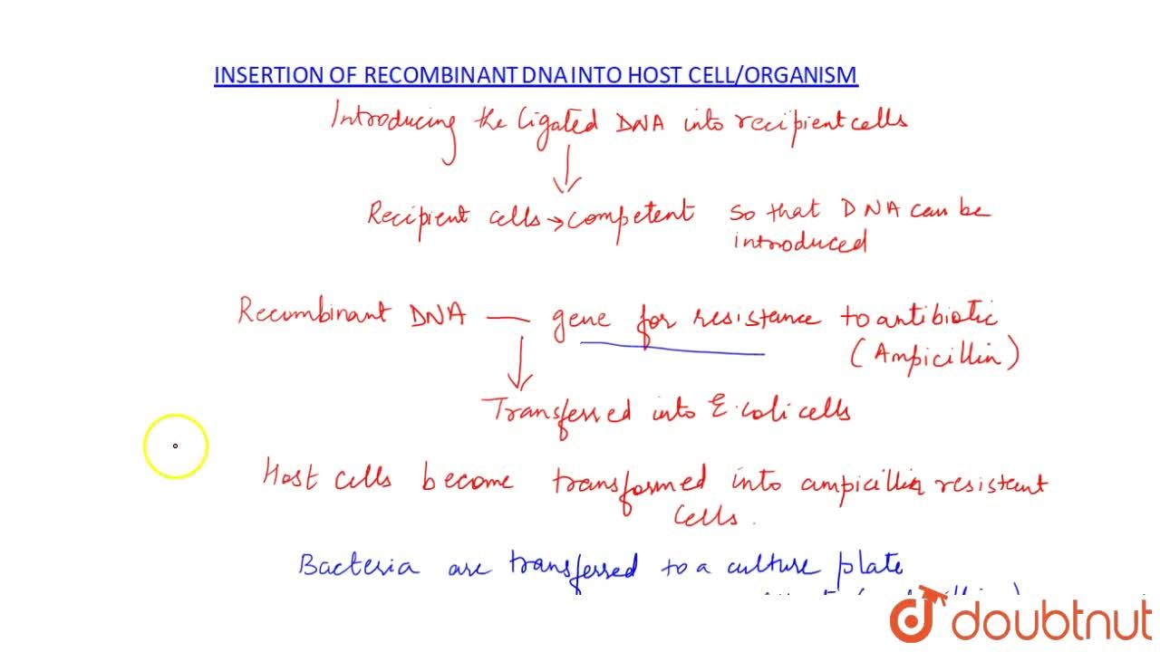 Solution for INSERTION OF RECOMBINANT DNA INTO THE HOST CELL,OR