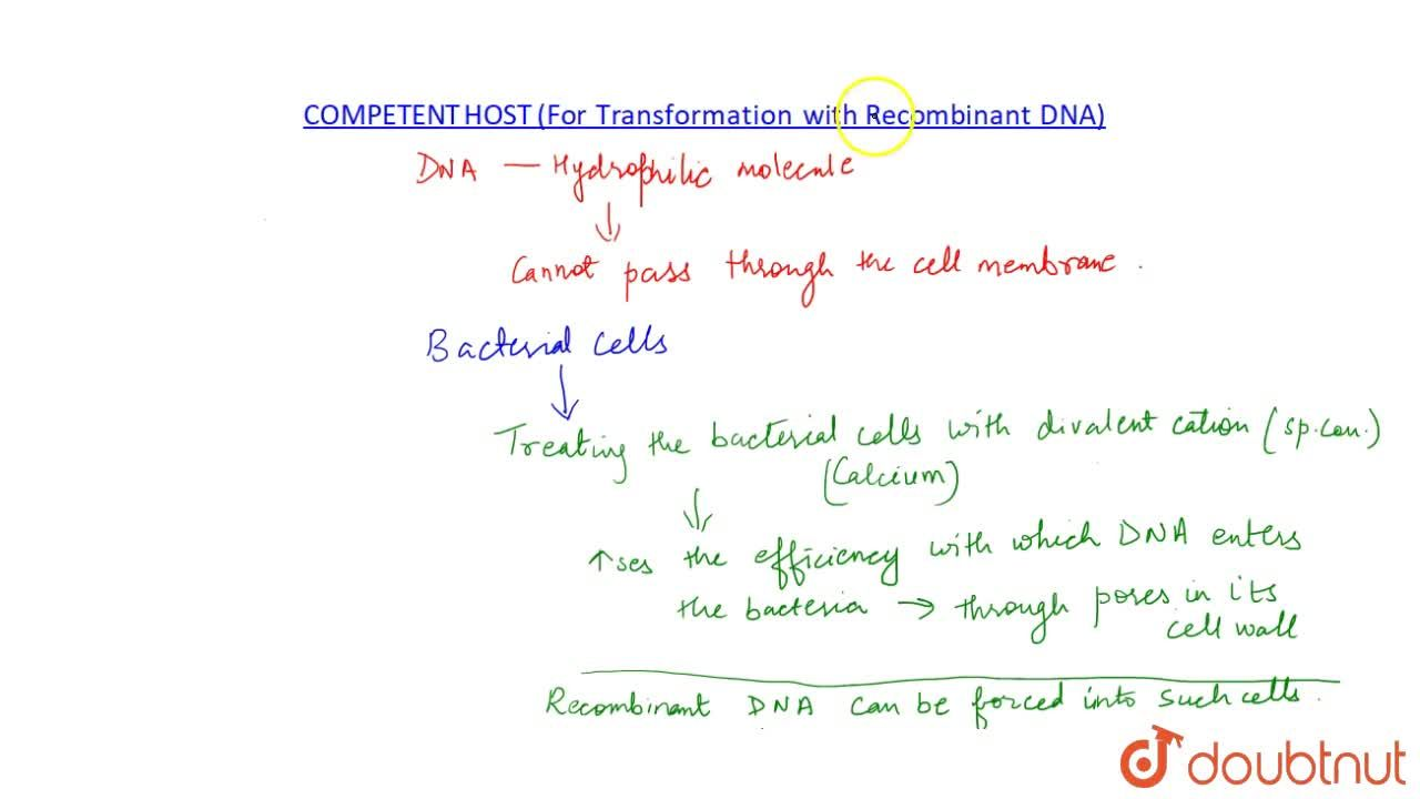 Solution for COMPETENT HOST (FOR TRANSFORMATION WITH RECOMBINAN