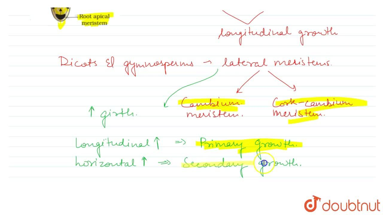 Solution for Plant Growth Generally Is Indeterminate