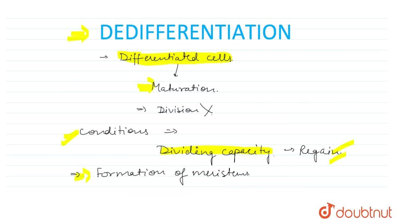 Solution for WHAT IS DEDIFFERENTATION?