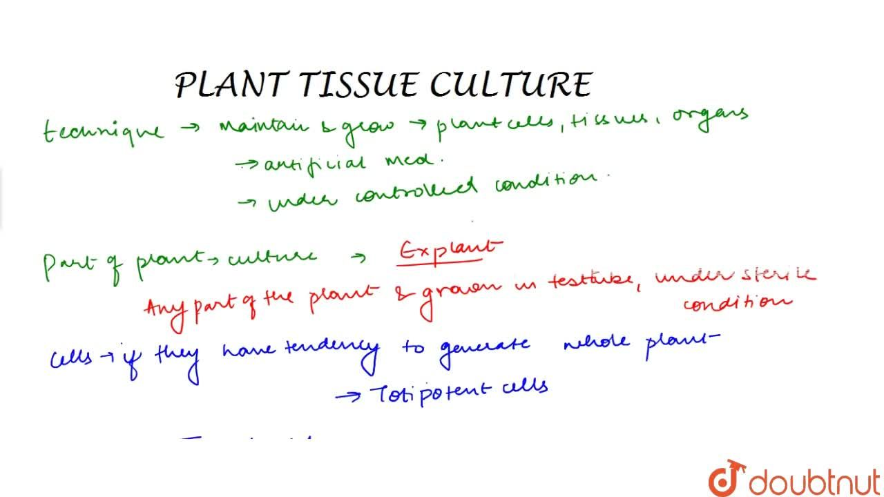 Solution for Tissue Culture