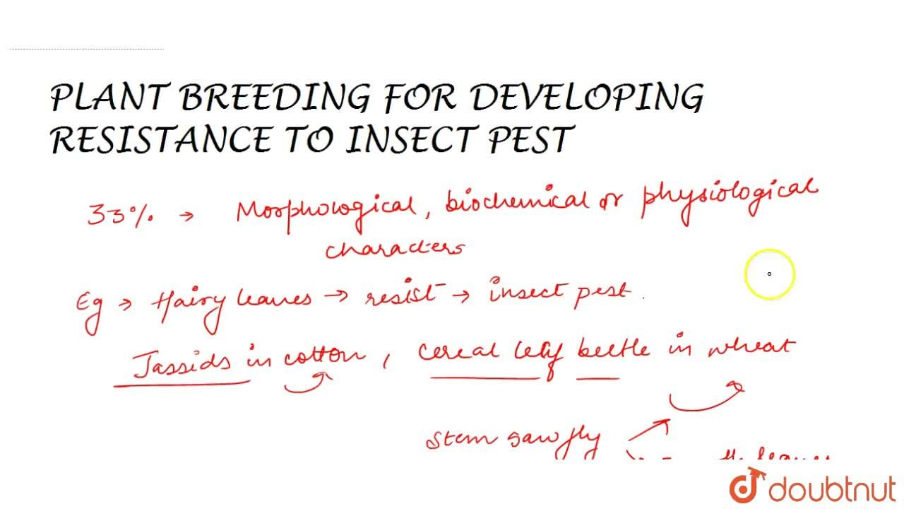 Solution for Plant Breeding For Developing Resistance To Insect