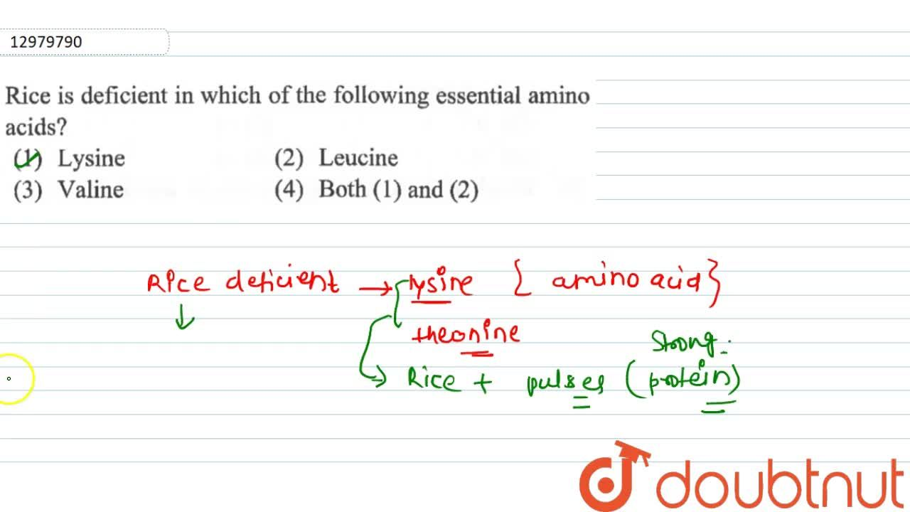 Solution for Rice is deficient in which of following essential