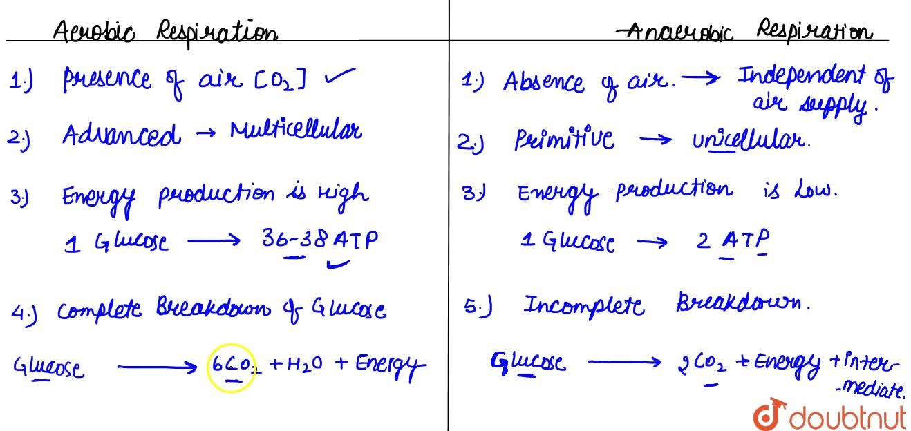 Solution for Types Of Respiration