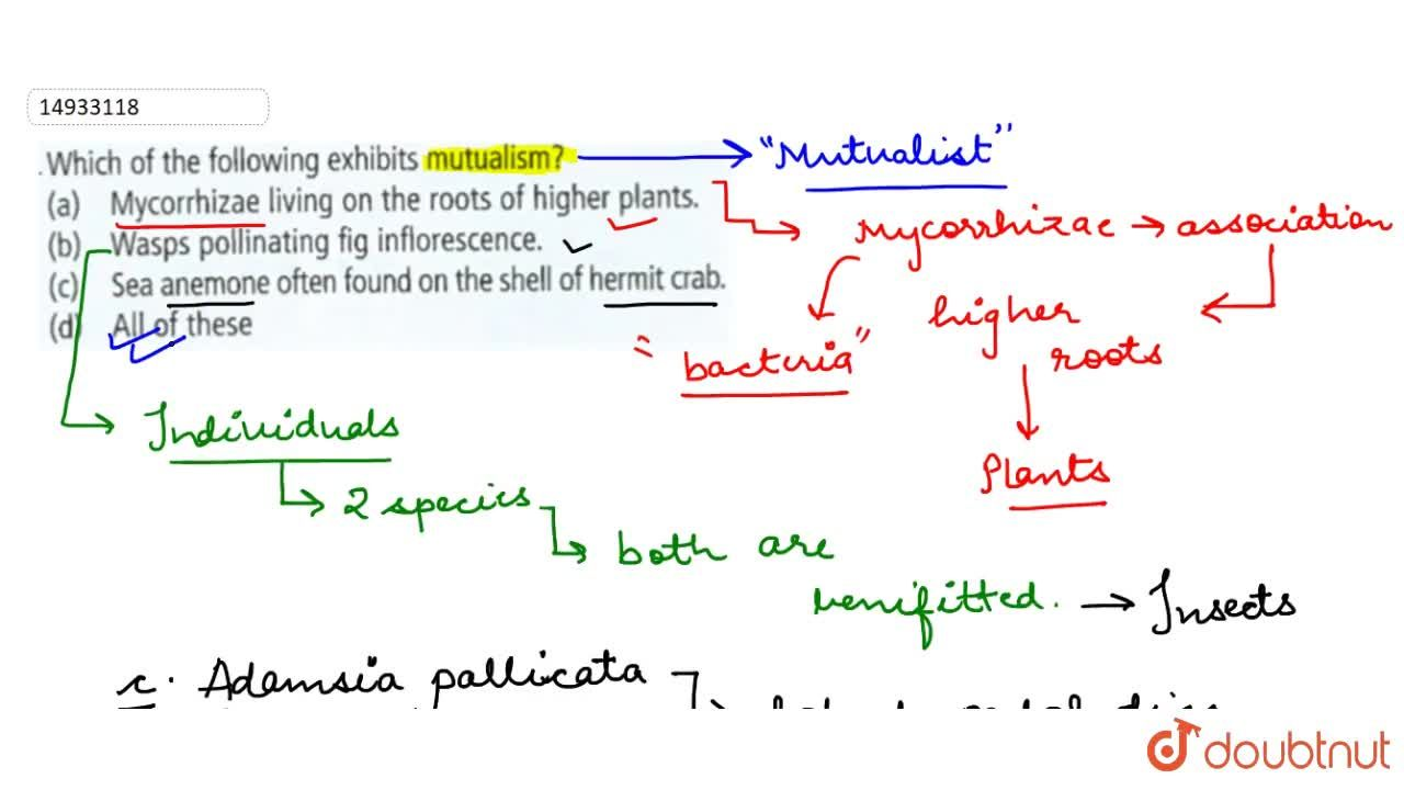 Solution for Which of the following exhibits mutualism ?