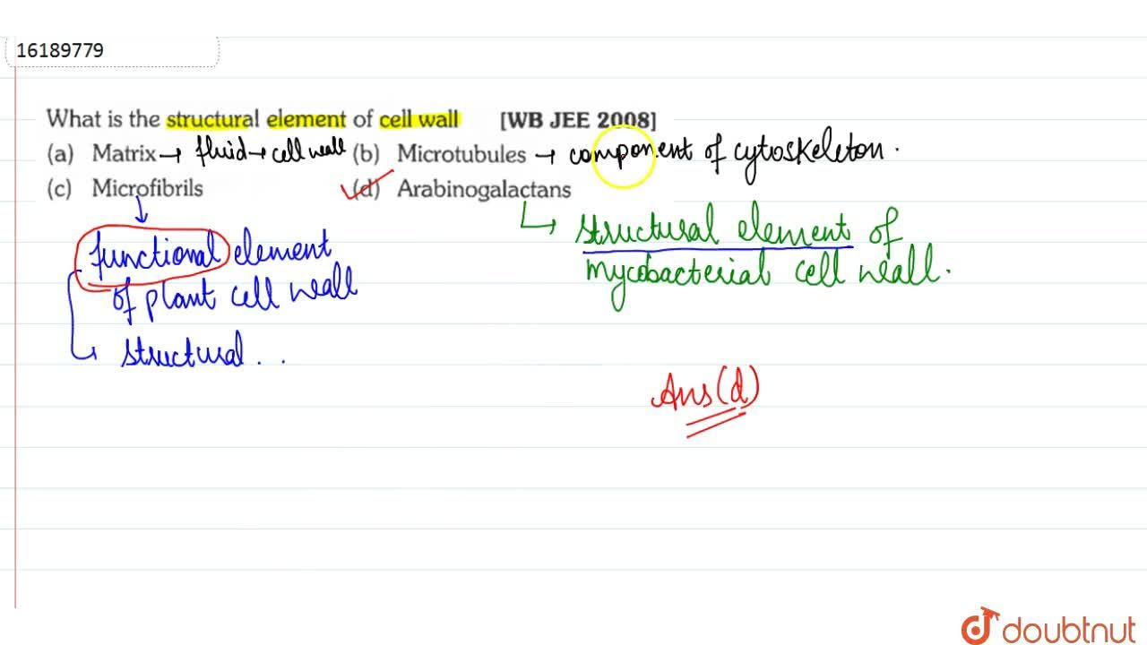 Solution for What is the structural element of cell wall