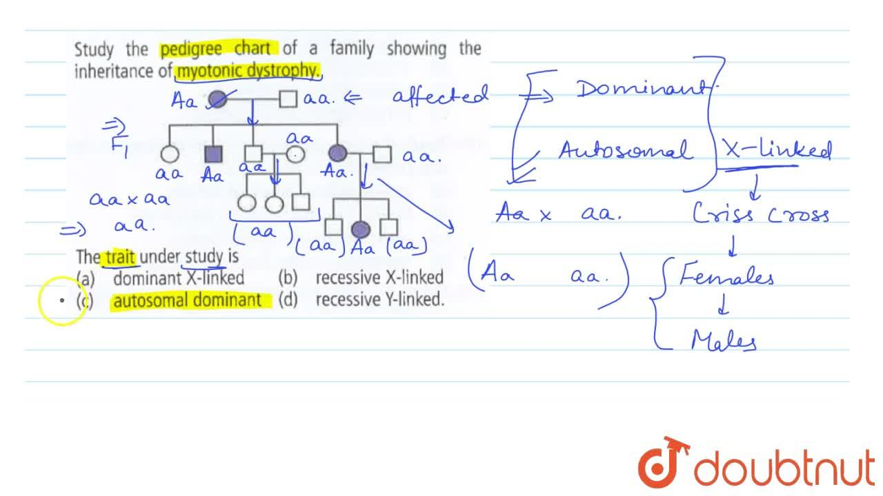 Solution for Study the pedigree chart of a family showing the i