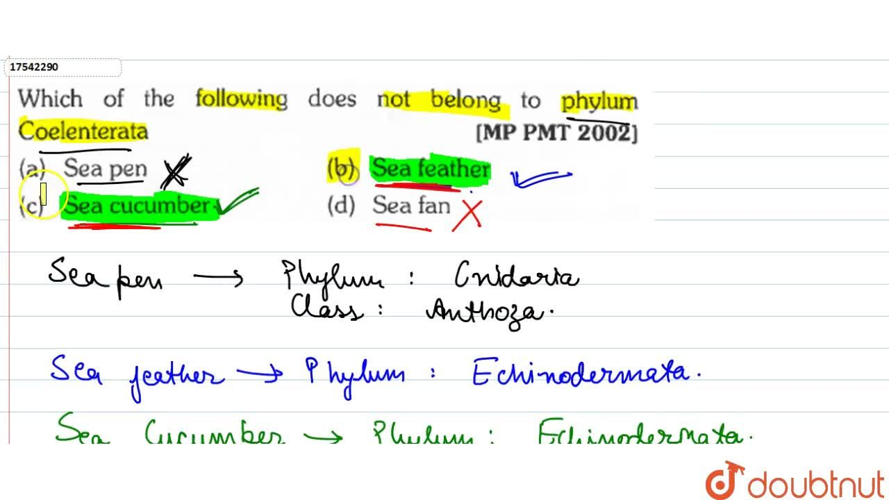 Solution for Which of the following does not belong to phylum C
