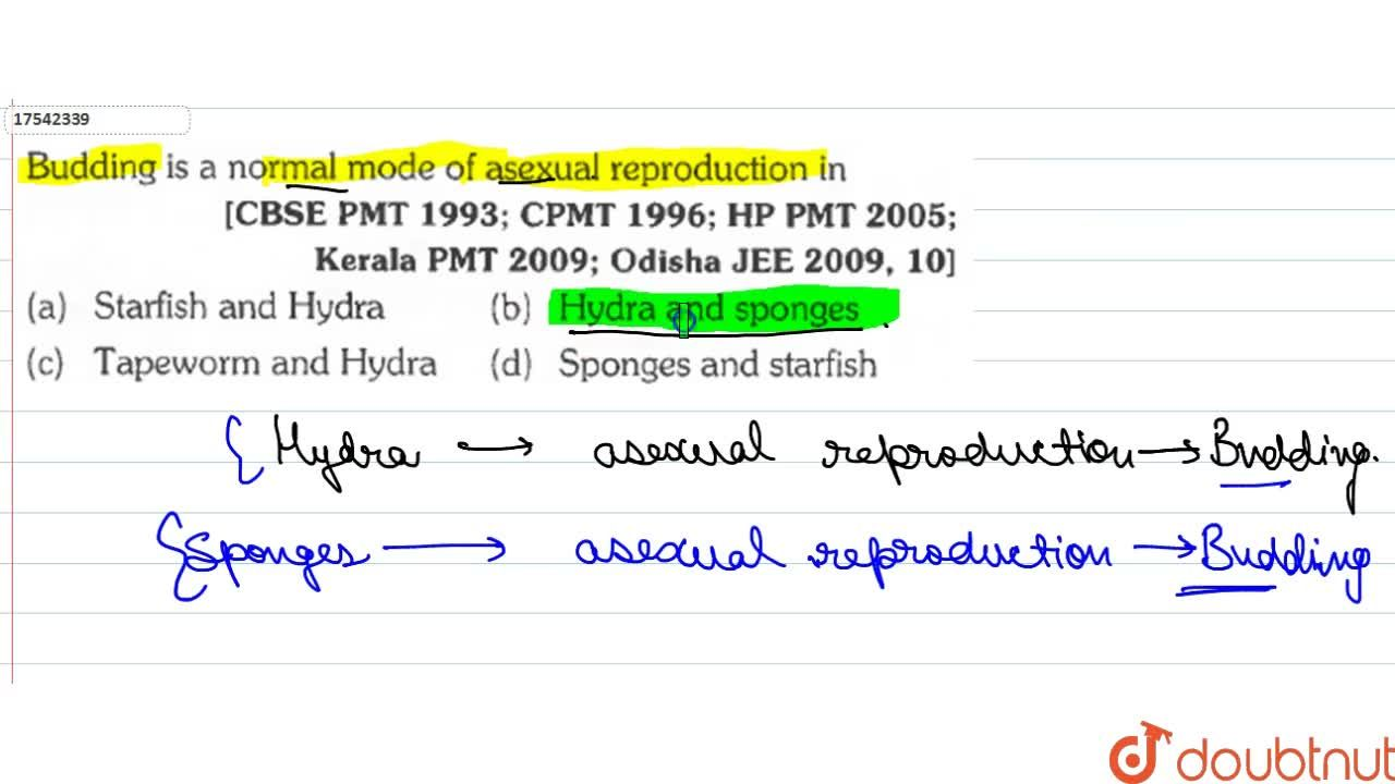 Solution for Budding is a normal mode of asexual reproduction i