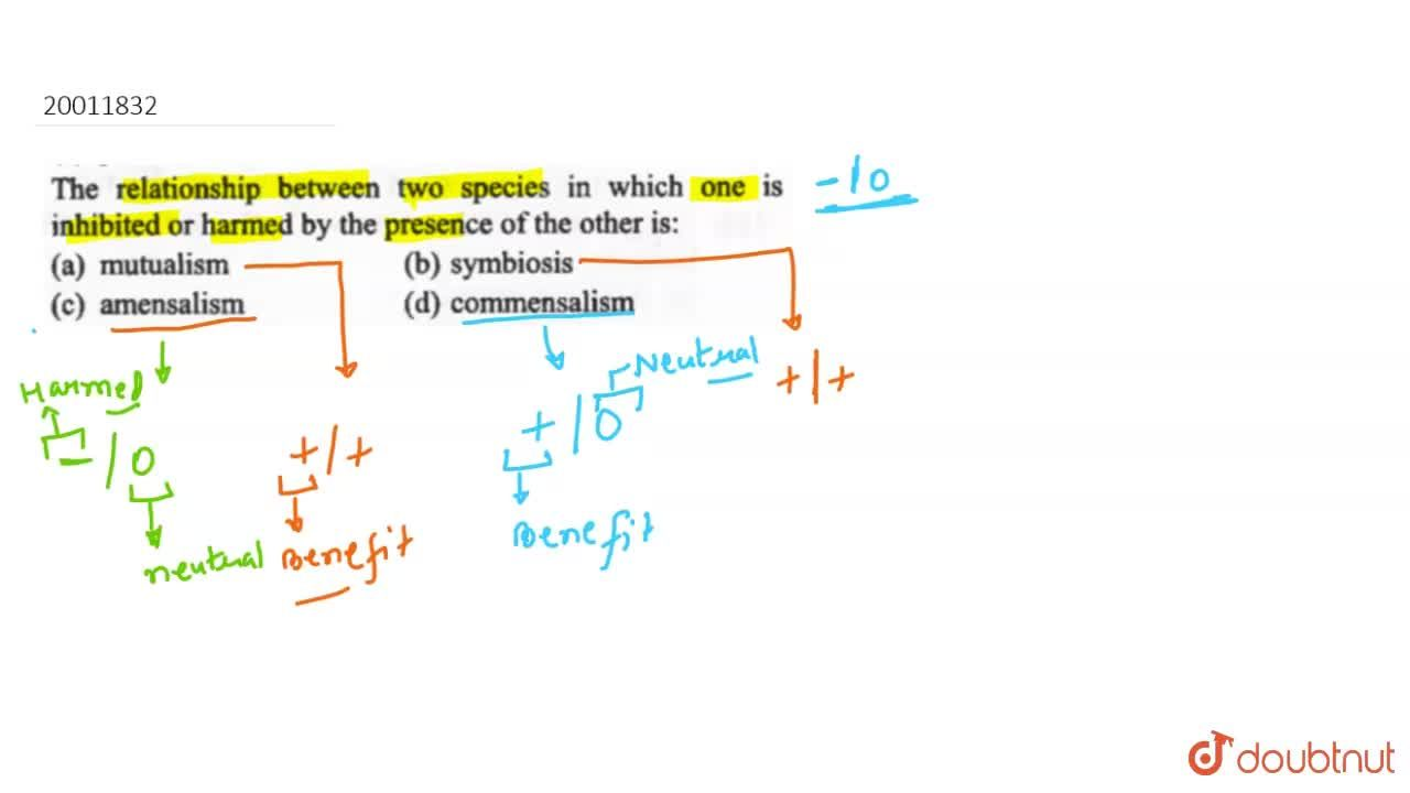 Solution for The relationship between two species in which one