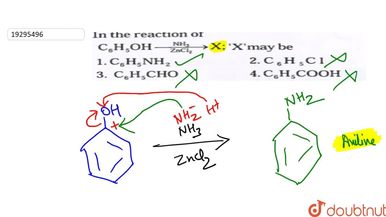 Solution for In the reaction of C_(6)H_(5)OH overset(NH_(2))un