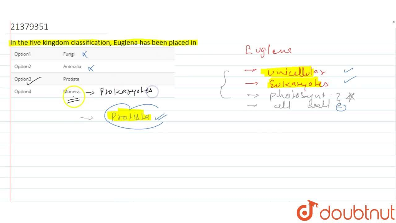 Solution for In the five kingdom classification, Euglena has be