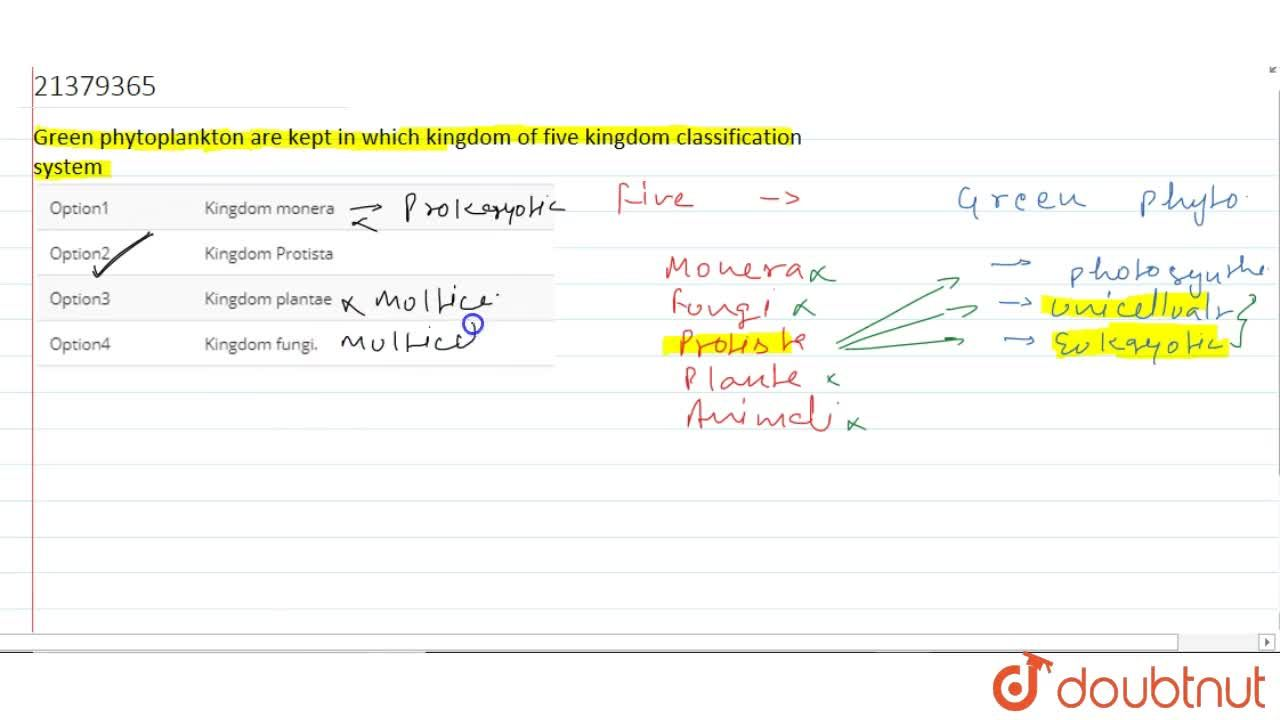 Solution for Green phytoplankton are kept in which kingdom of f