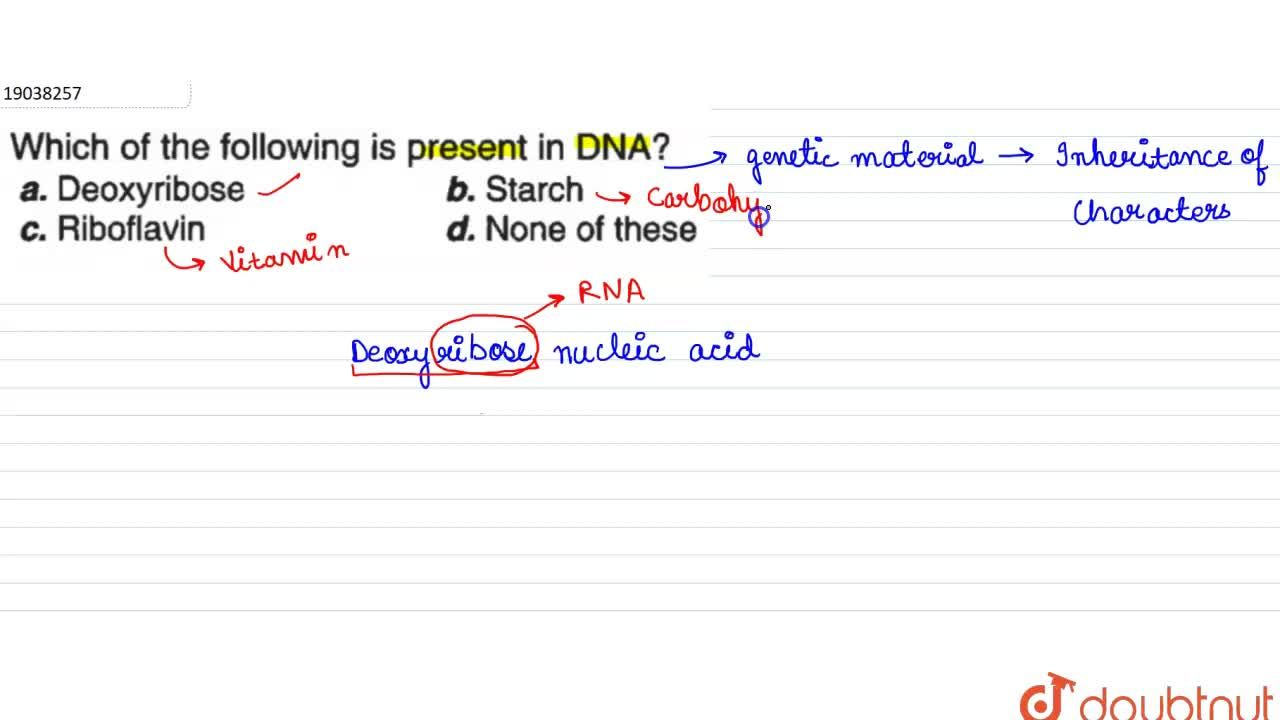Solution for Which of the following is present in DNA?