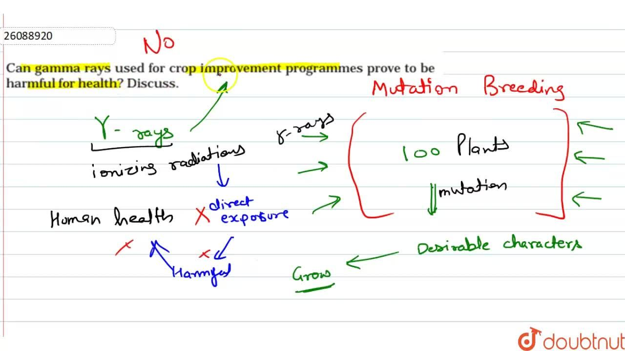 Solution for Can  gamma  rays  used  for  crop  improvement pro