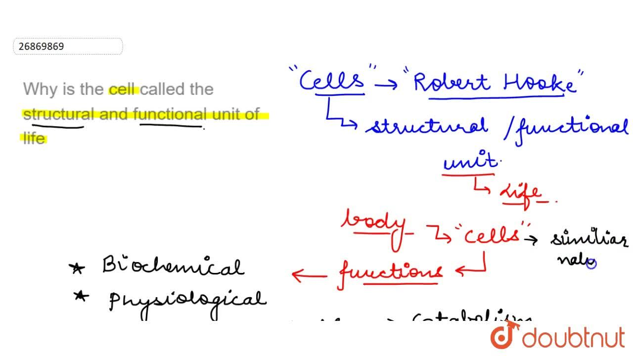 Solution for Why is the cell called the structural and function