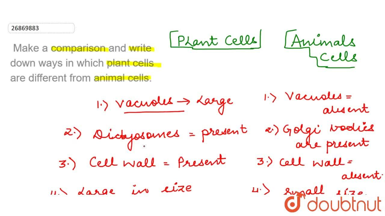 Make a comparison and write down ways in which plant cells are different from animal cells.