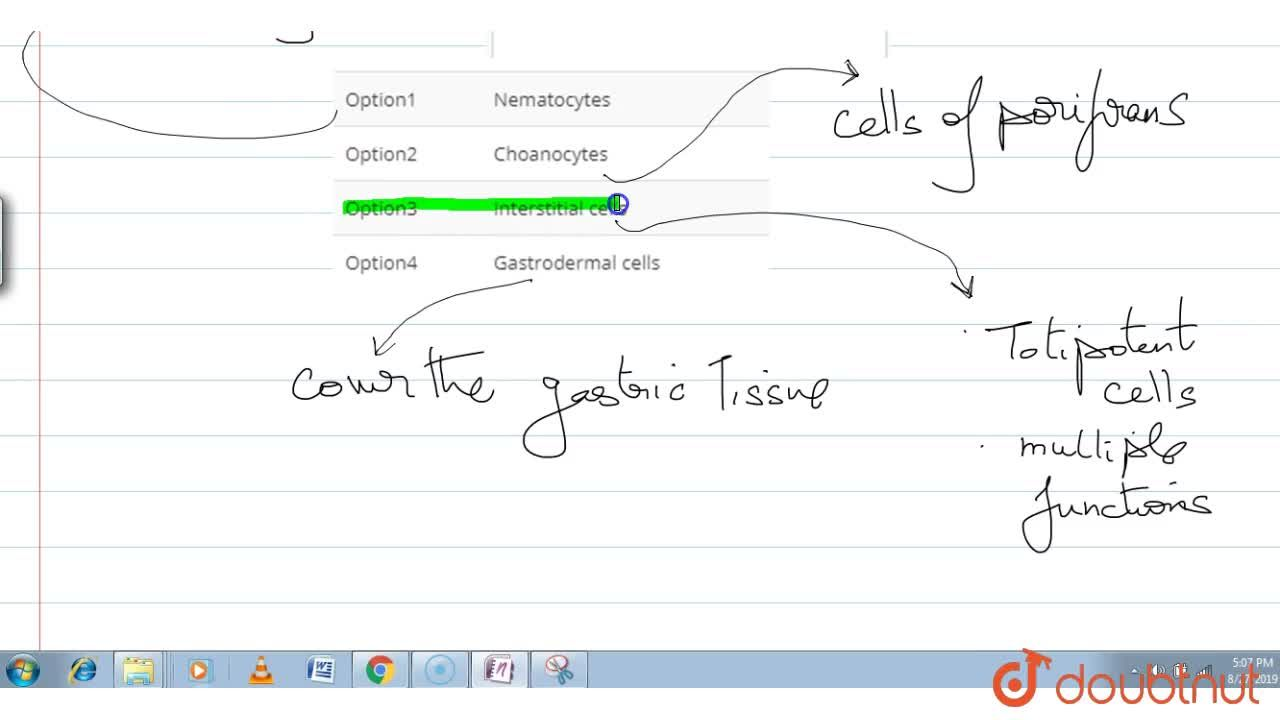 In the following  cell, each cell is specialised to perform a single cpecific function except