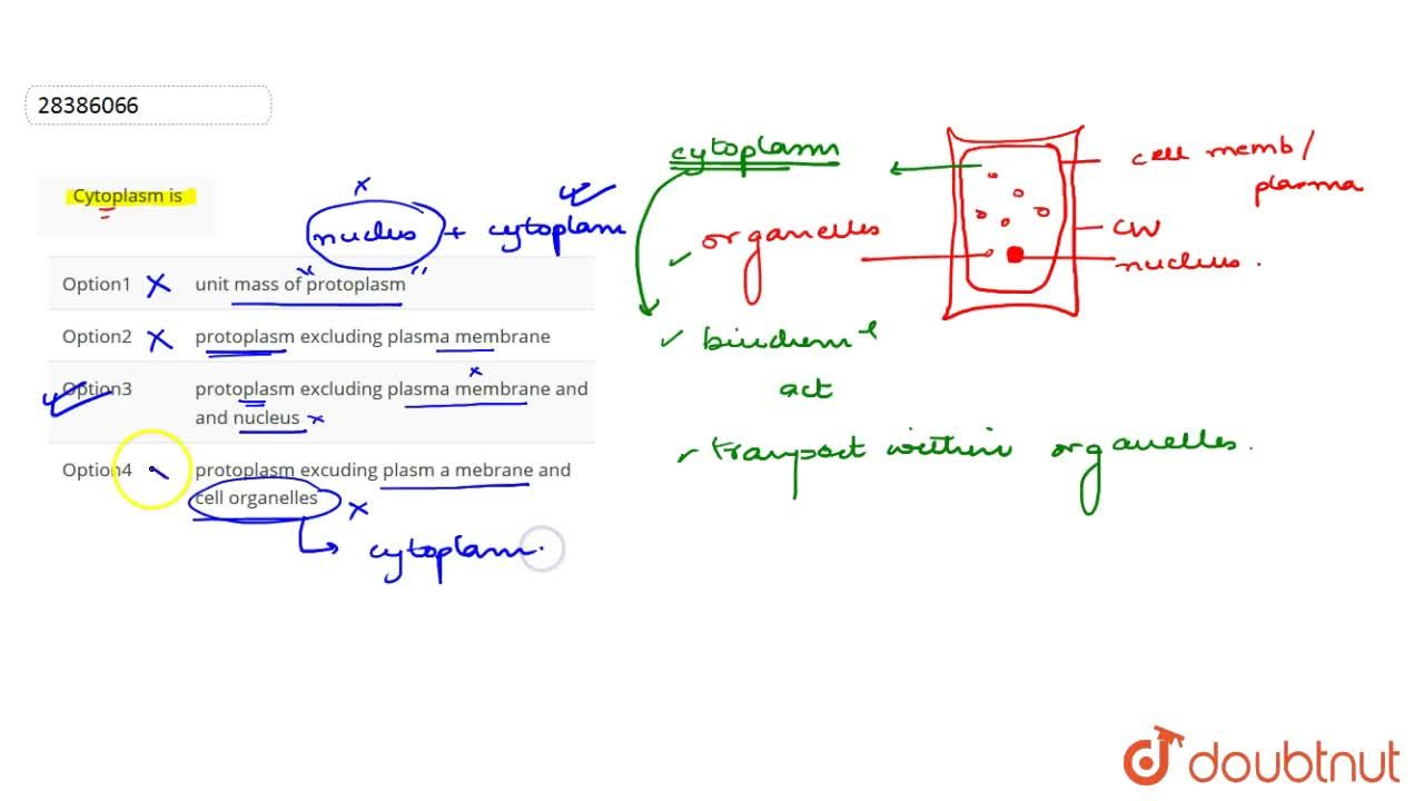 Solution for Cytoplasm is