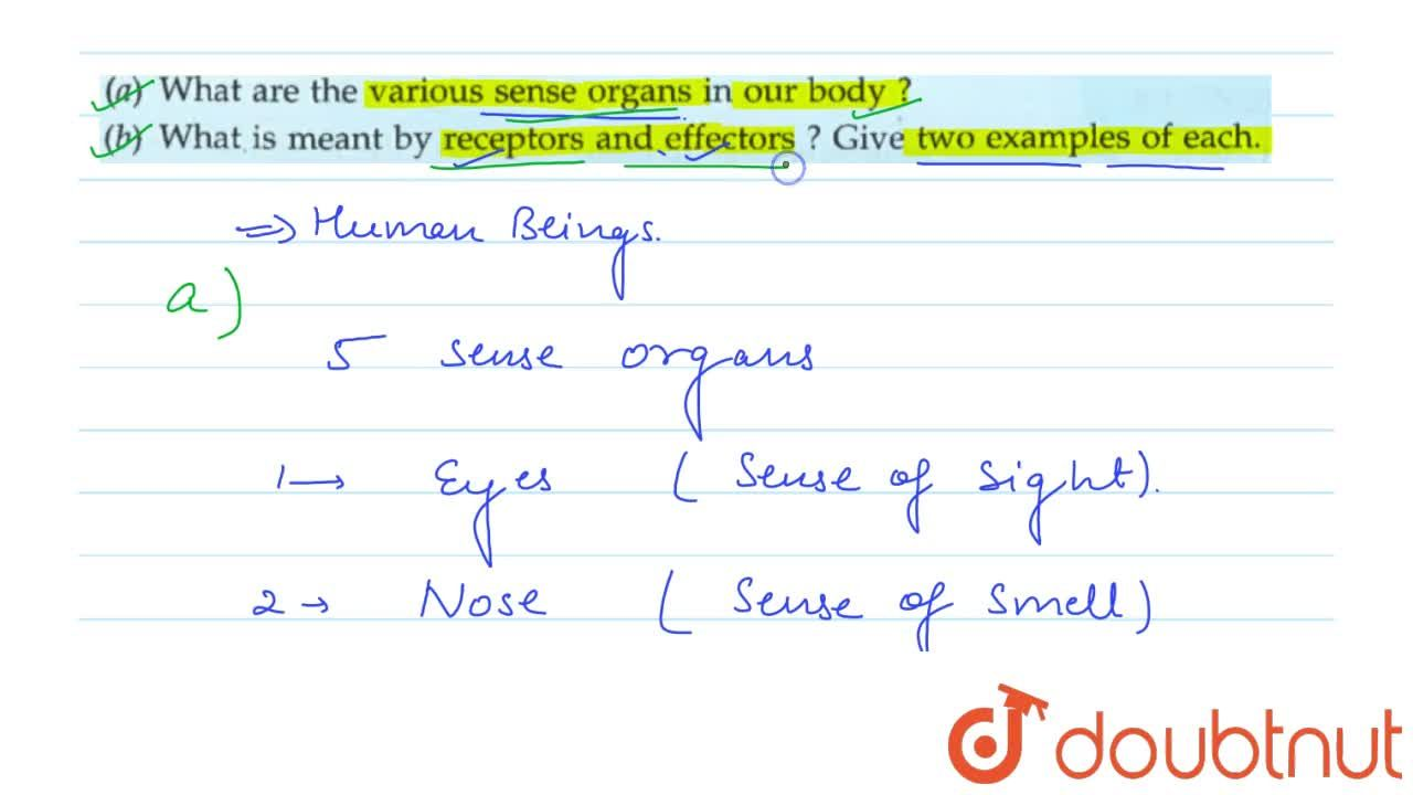 Solution for (a) What are the various sense organs in our body?