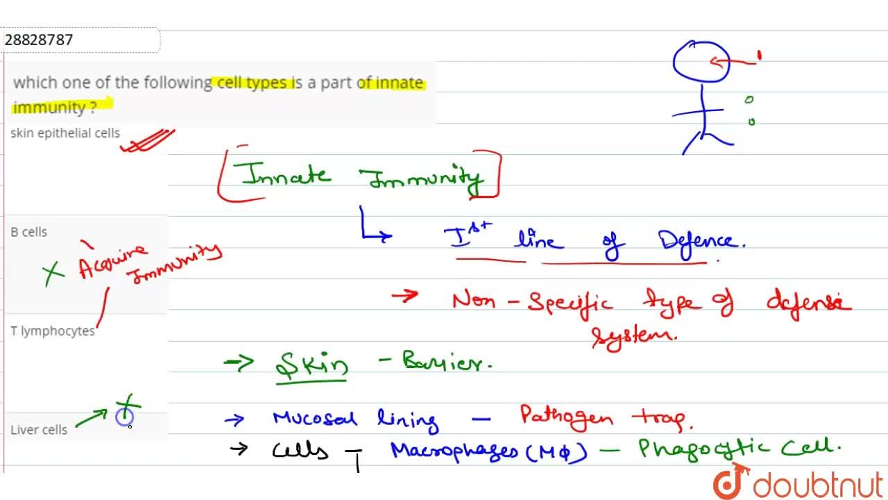 Solution for which  one  of the  following  cell  types  is a p