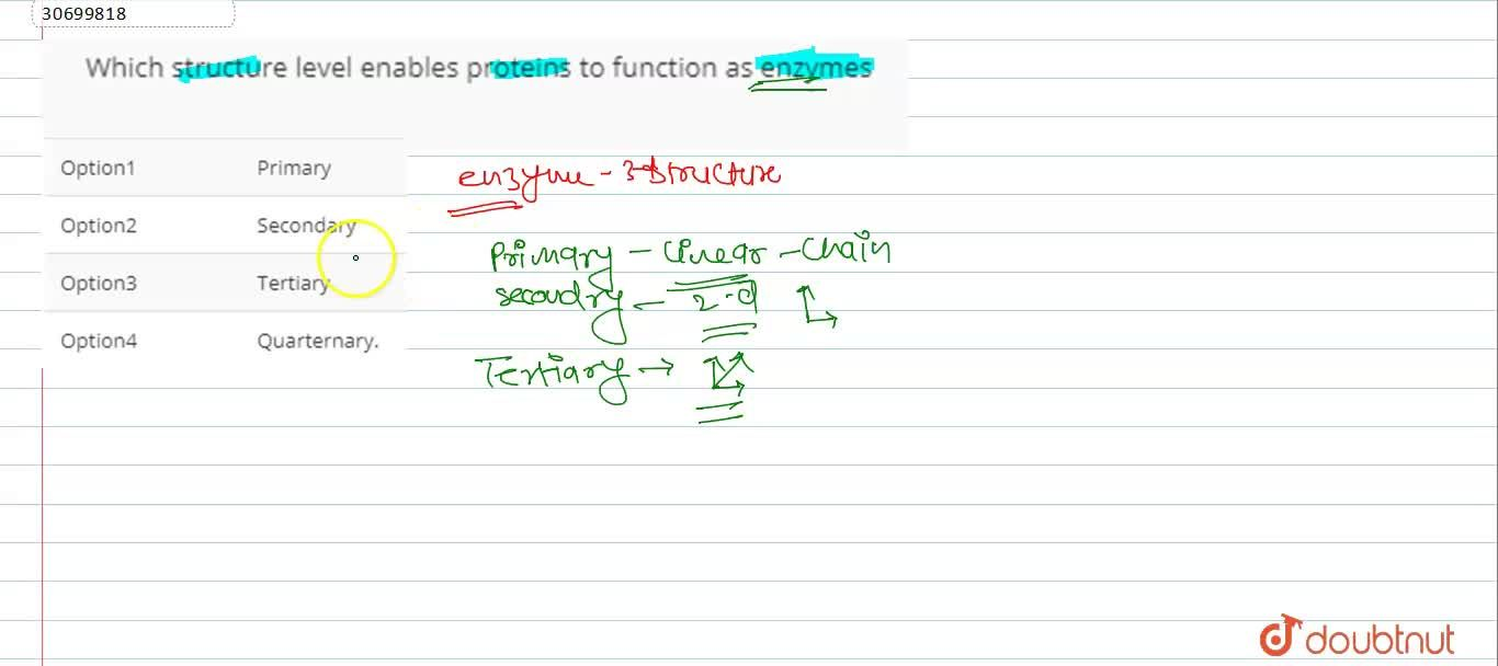 Solution for Which structure level enables proteins to function
