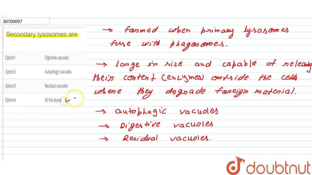 Solution for Secondary lysosomes are