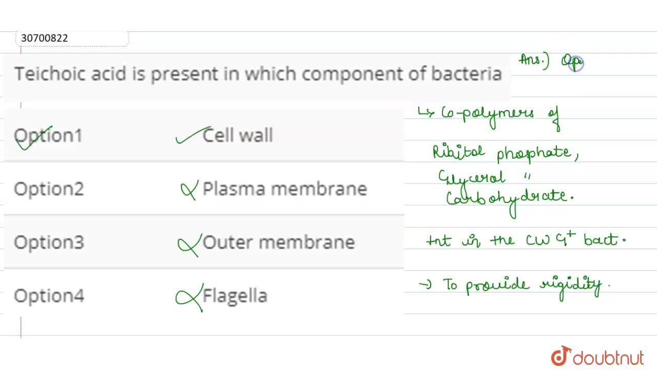 Solution for Teichoic acid is present in which component of bac