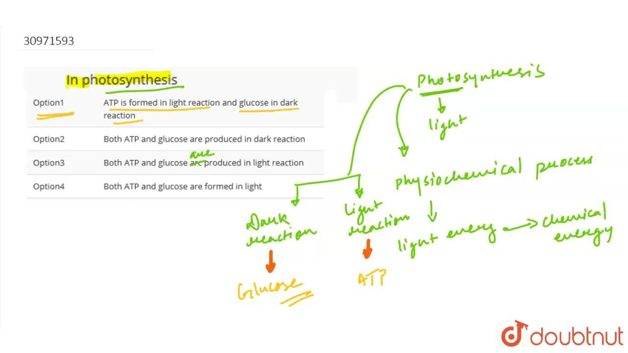 Solution for In photosynthesis