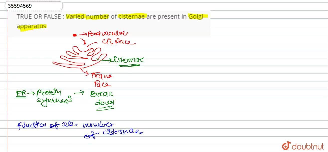 Solution for Varied number of cisternae are present in Golgi ap