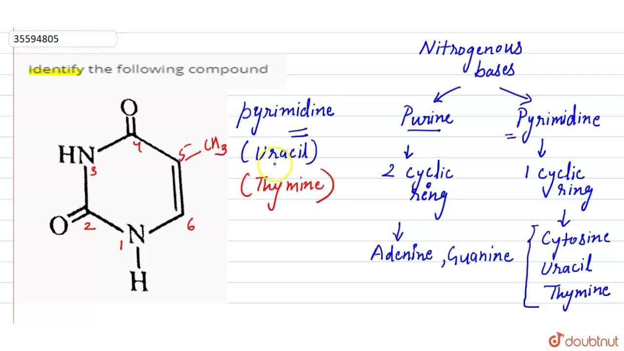 """Solution for Identify the following compound <br> <img src=""""htt"""