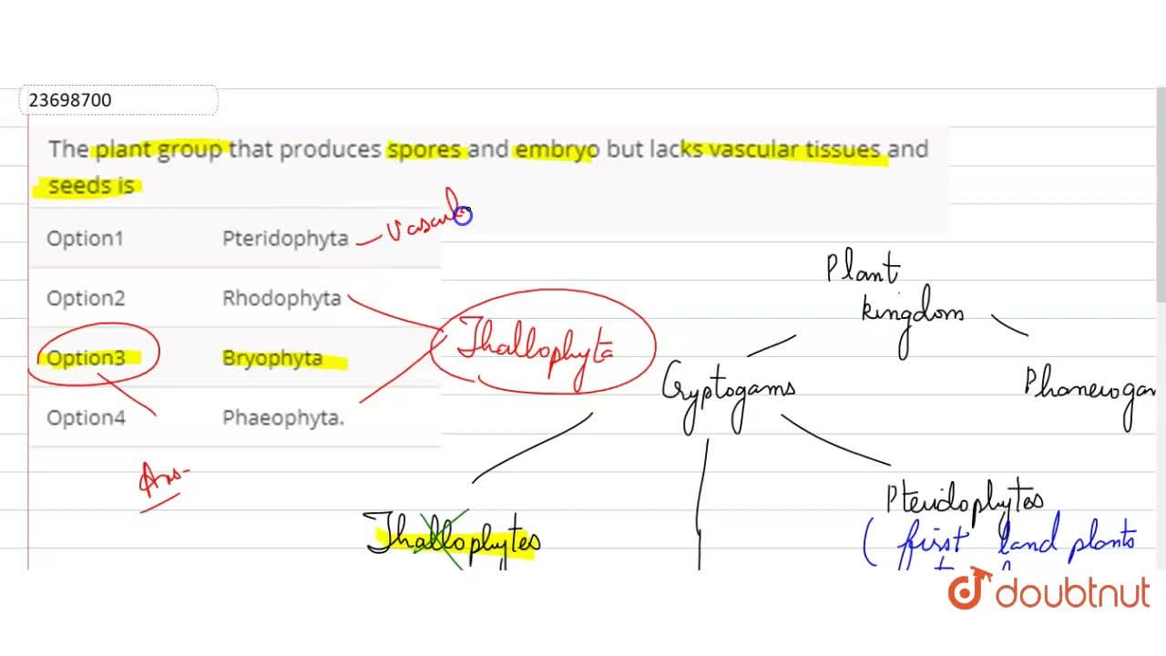 Solution for The plant group that produces spores and embryo bu