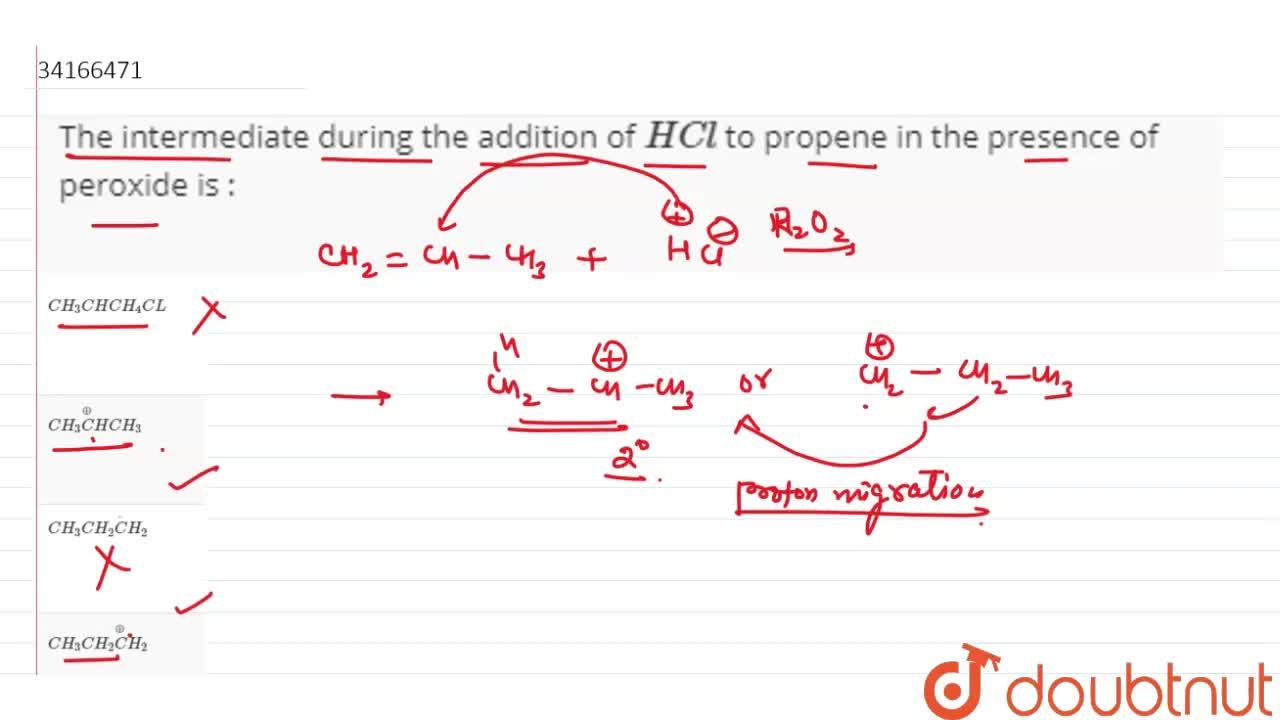 Solution for The intermediate during the addition of HCl to p