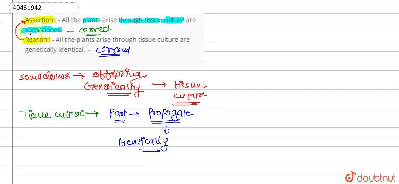 Solution for Assertion : - All the plants arise through tissue