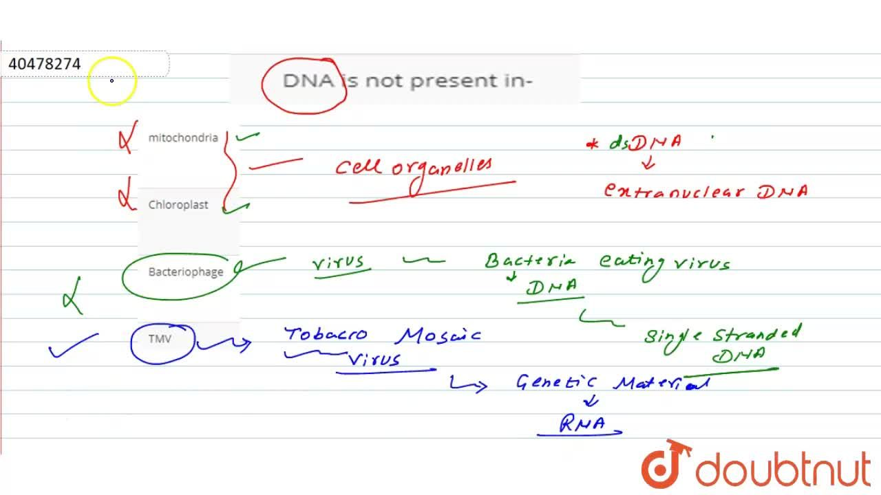 Solution for DNA is not present in-