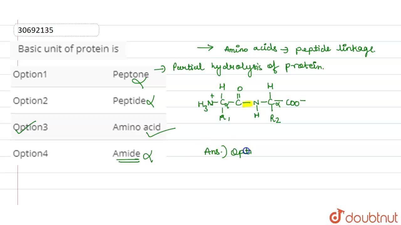 Solution for Basic unit of protein is