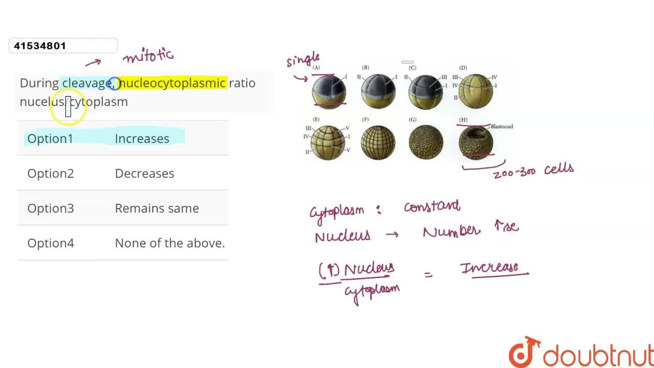 Solution for During cleavage, nucleocytoplasmic ratio nucelus,c