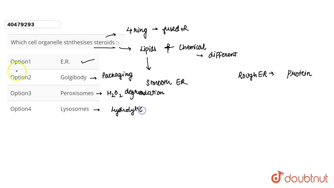 Solution for Which cell organelle stnthesises steroids :-