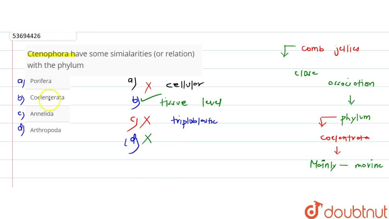 Solution for Ctenophora have some simialarities (or relation) w